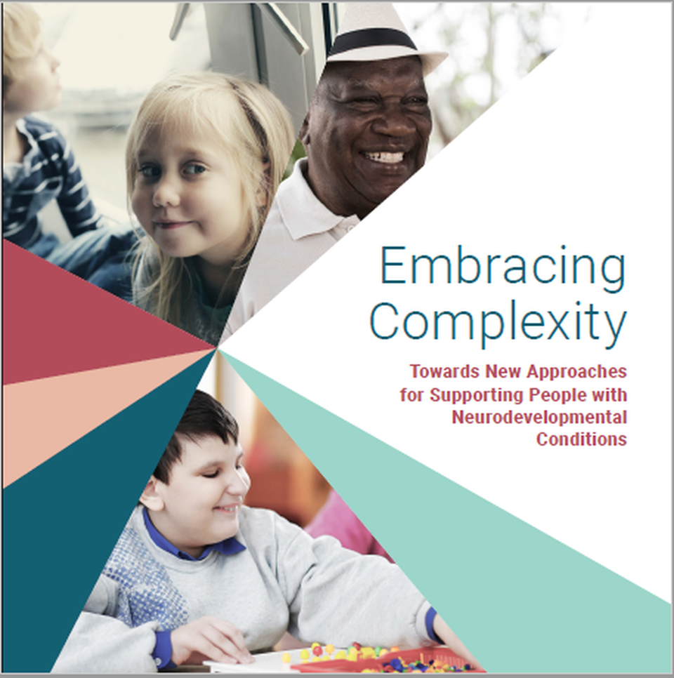 Front Cover Embracing Complexity Report